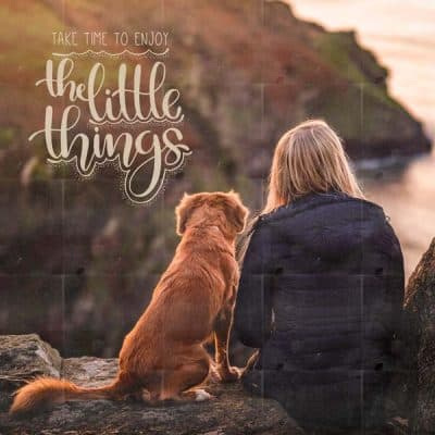 The Little Things Mockup